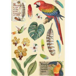 Dekory drewniane AMAZONIA PAPUGA A5 Stamperia